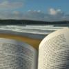 浜辺で読む洋書